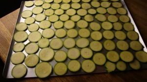 Zucchini Chip sprayed